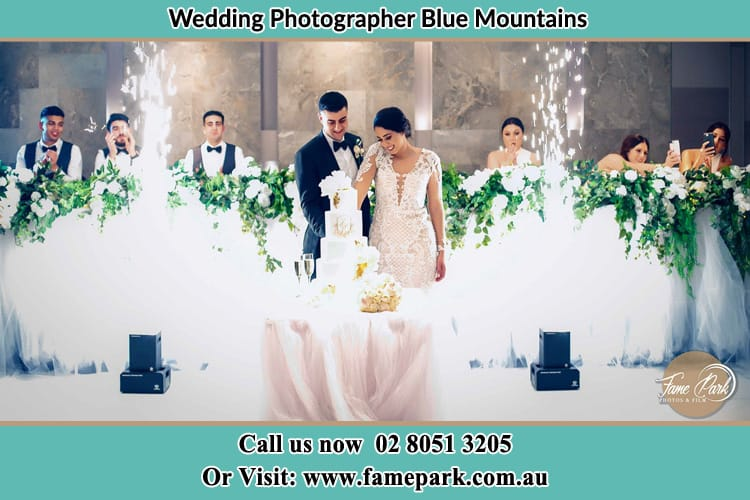Spectacular photo of Bride and Groom cutting their cake Blue Mountains